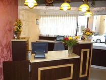 sitraHOT336336_273910_hotel-des-alpes-2etoiles-resception