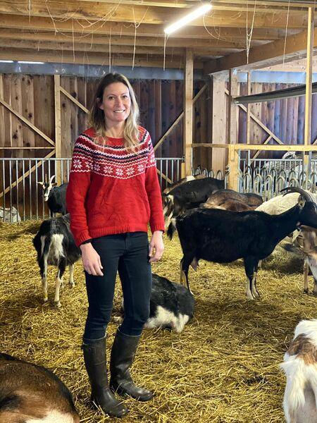 Goat farm of Barrettes // Massif des Brasses
