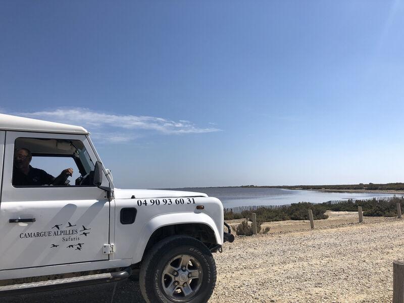 Camargue Safari