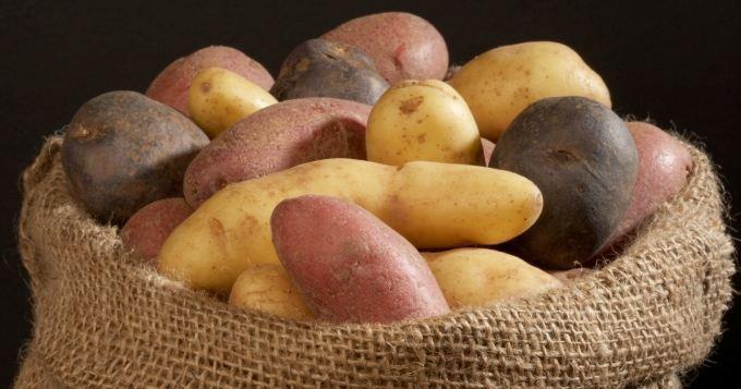 Rendez-vous futés ! : La pomme de terre en Ardèche, pour tous les goûts et de toutes les couleurs