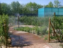 Maison aquarium - Jaligny Zone brumeuse dans le jardin de nature Ⓒ Maison Aquarium