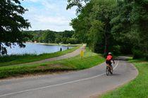 Balade en forêt de Tronçais Cyclo à l'étang de Saint-Bonnet Ⓒ Louis Holder