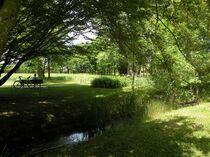 parc-et-jardin-yzeure-rives_du_danube3