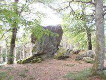 site des Pierres druidiques Ⓒ Carol Bogros-Fonteneau