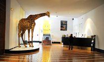 museum de grenoble
