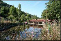 Visite guidée du Moulin de Raoul - Saint-Joseph-des-Bancs