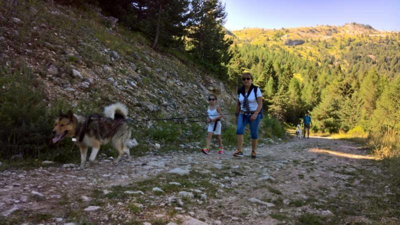 Cani-randonnée Dévoluy 1 - � Inès et Laurren