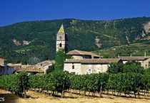 Visite du Caveau des vignerons de Valvignères - Alba-la-Romaine