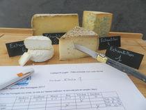 Fromaniac : concours des fromages de France et fête de la gastronomie - Saint-Agrève