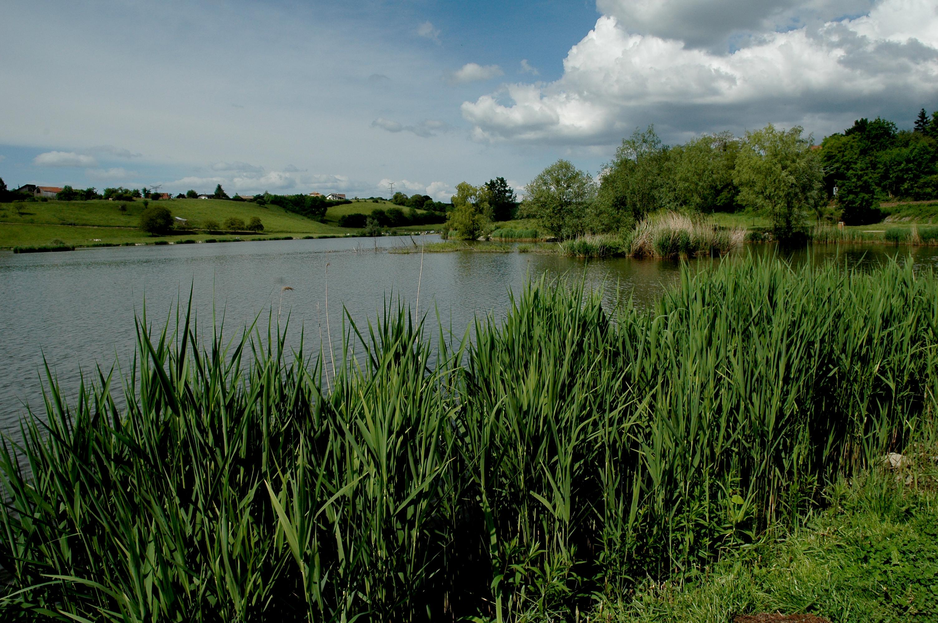 Le Lac de Machilly
