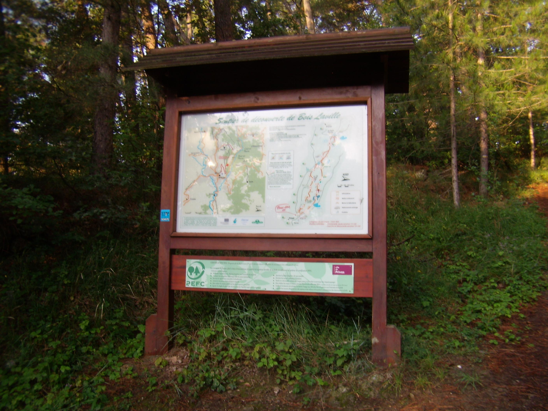Sentiers thématiques : Arboretum du Bois Laville