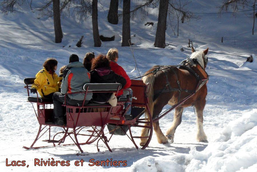Traîneau à cheval - © Lacs, Rivières et Sentiers