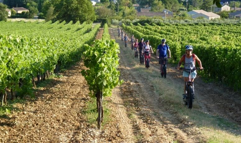 Les soirées vigneronnes au Domaine le Grand Jardin : Balade en trottinettes, atelie dégustation et repas vigneron - Vallon-Pont-d'Arc