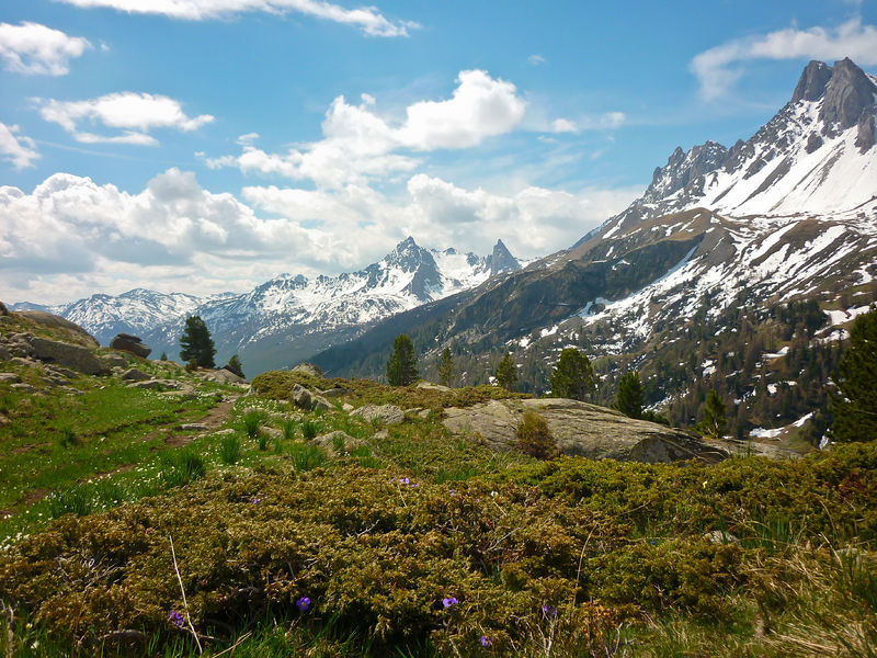 Haute vallée de la Clarée - © S.Morattel