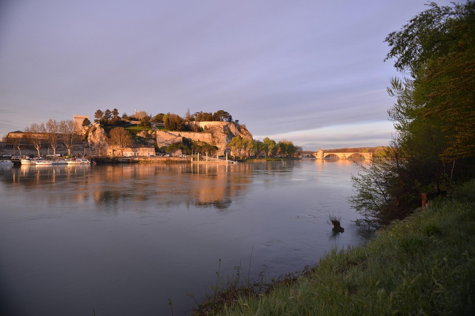 Avignon vu du Rhône