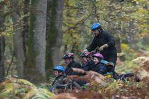 Itinérance Mushing Cani kart en forêt Ⓒ Itinérance Mushing