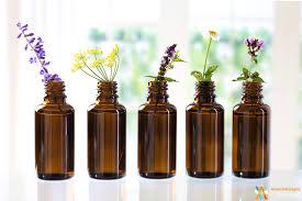Université Populaire Centre Ardèche : Aromathérapie du bien-être