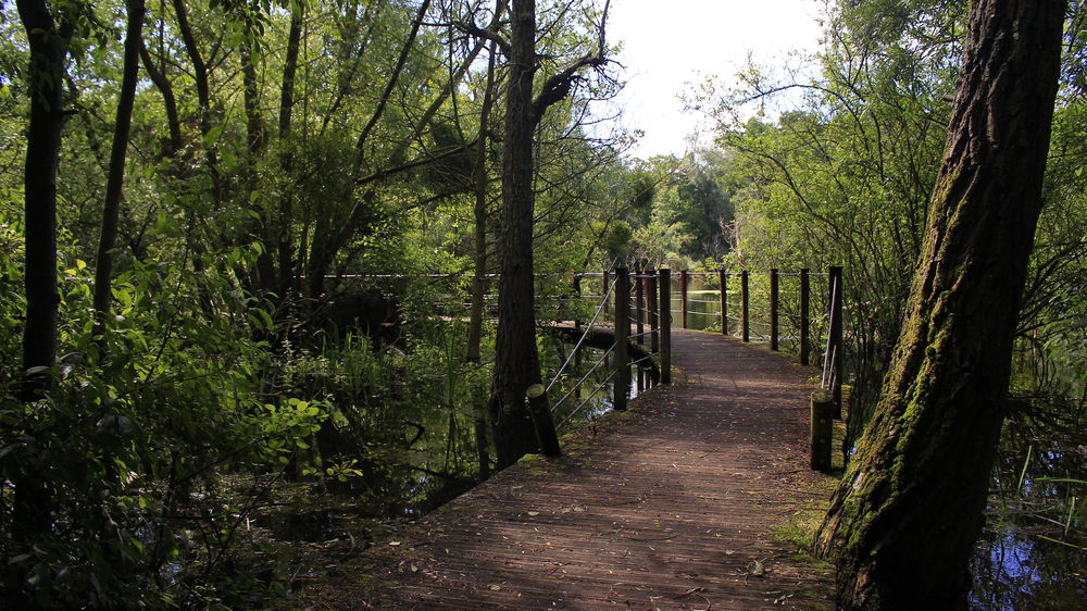 Sentier randonnée Parc du Pâtis