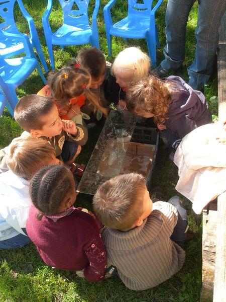 Helixa the snails farm // Massif des Brasses
