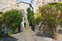 ©On-visite.com-ADT07-Village de caractere-St Vincent de Barres-Ruelle (2)