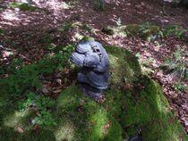 rencontre d'un bonhomme champignon Ⓒ Carol Bogros-Fonteneau