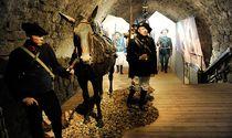 musee des troupes de montagne