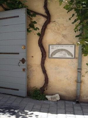 L' Archa des Carmes