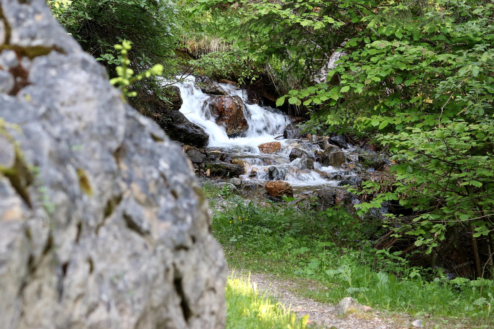 Cours d'eau sur le sentier