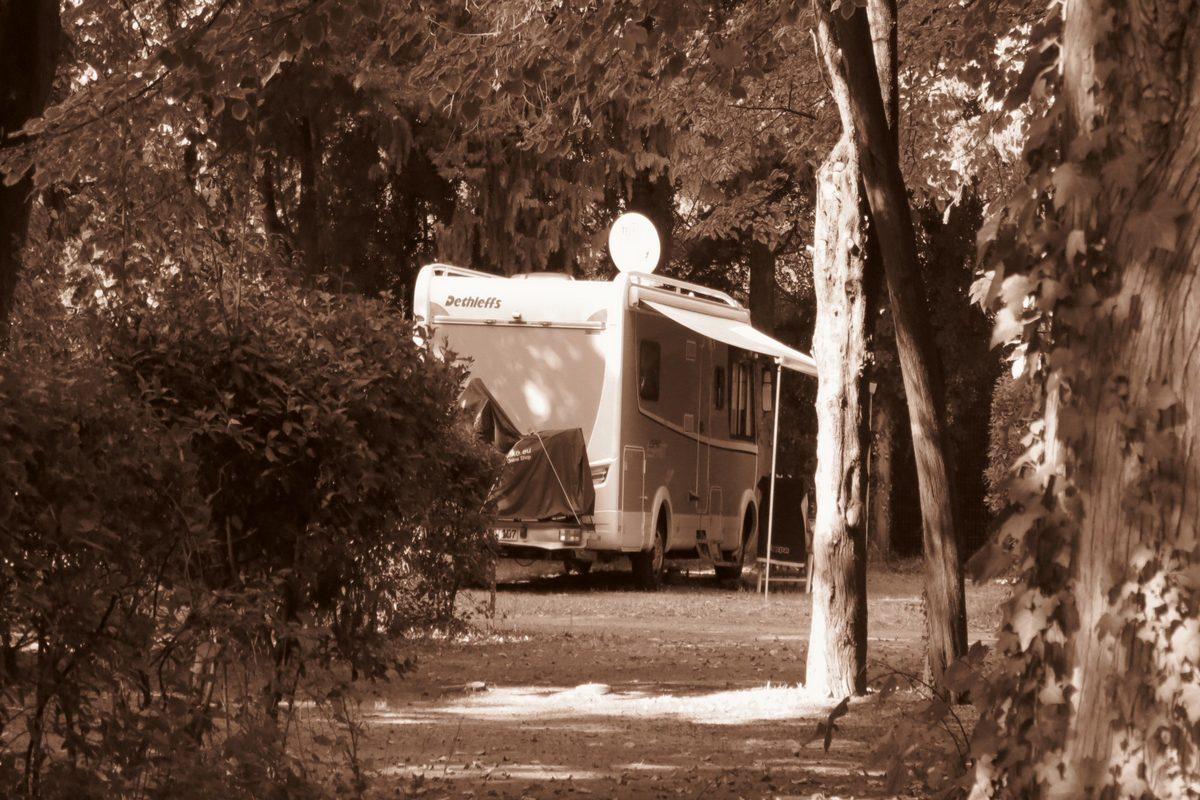 Camping Les Avignon (ex La Laune)