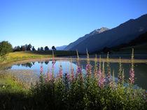 Lac de Barbeyroux - © Régine Ranguis