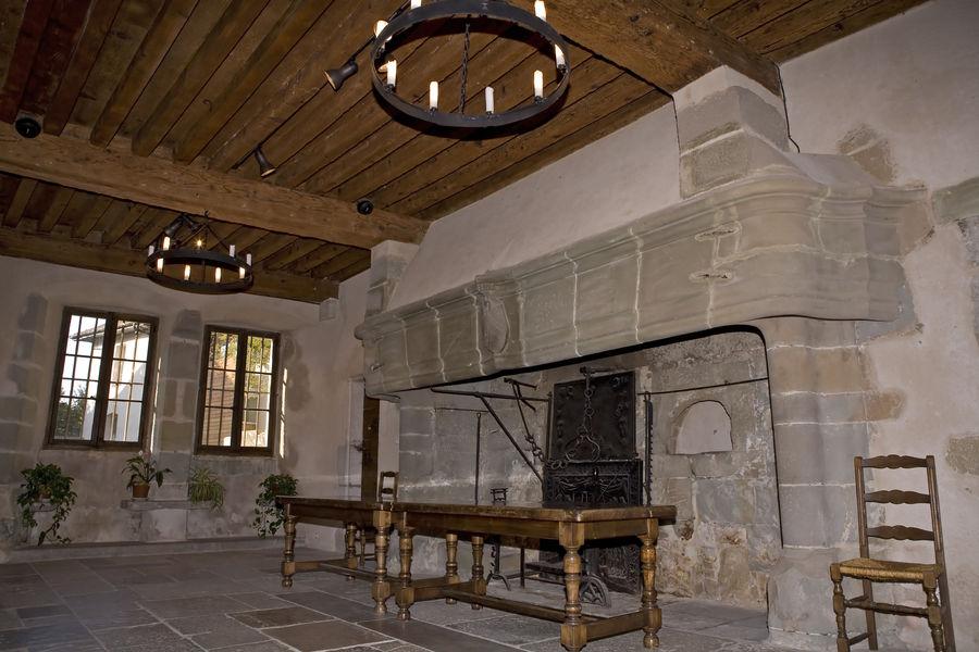 prieurébourgetdulac-aixlesbainsrivieradesalpes-cheminée