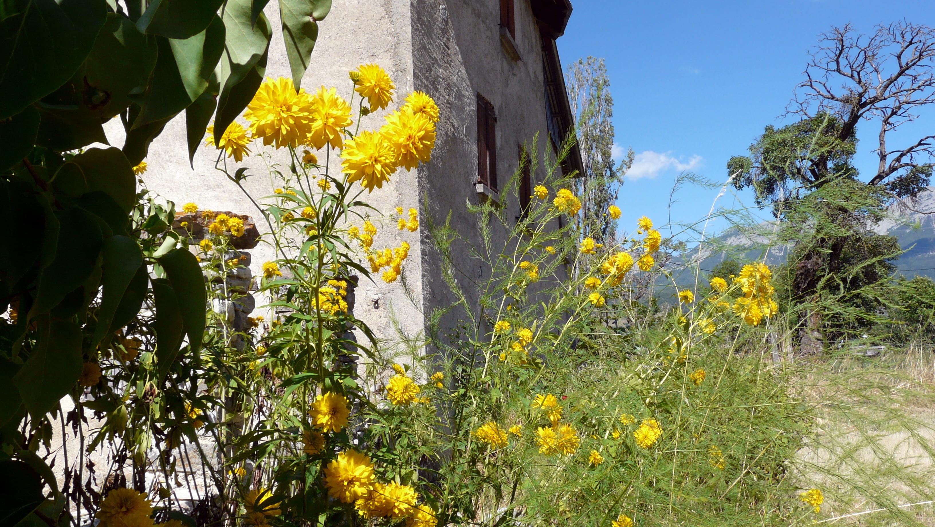 Visite commentée Les villages du pays de Seyne