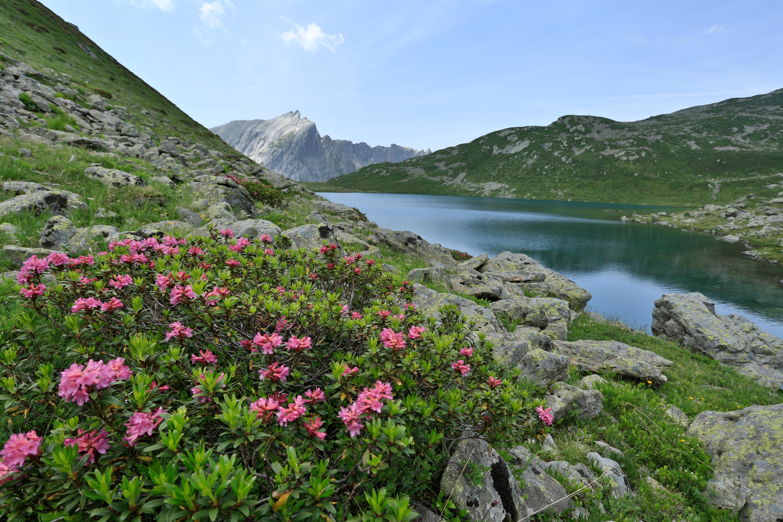 Les plus r serve naturelle nationale des contamines montjoie office de tourisme sallanches - Office du tourisme les contamines montjoie ...