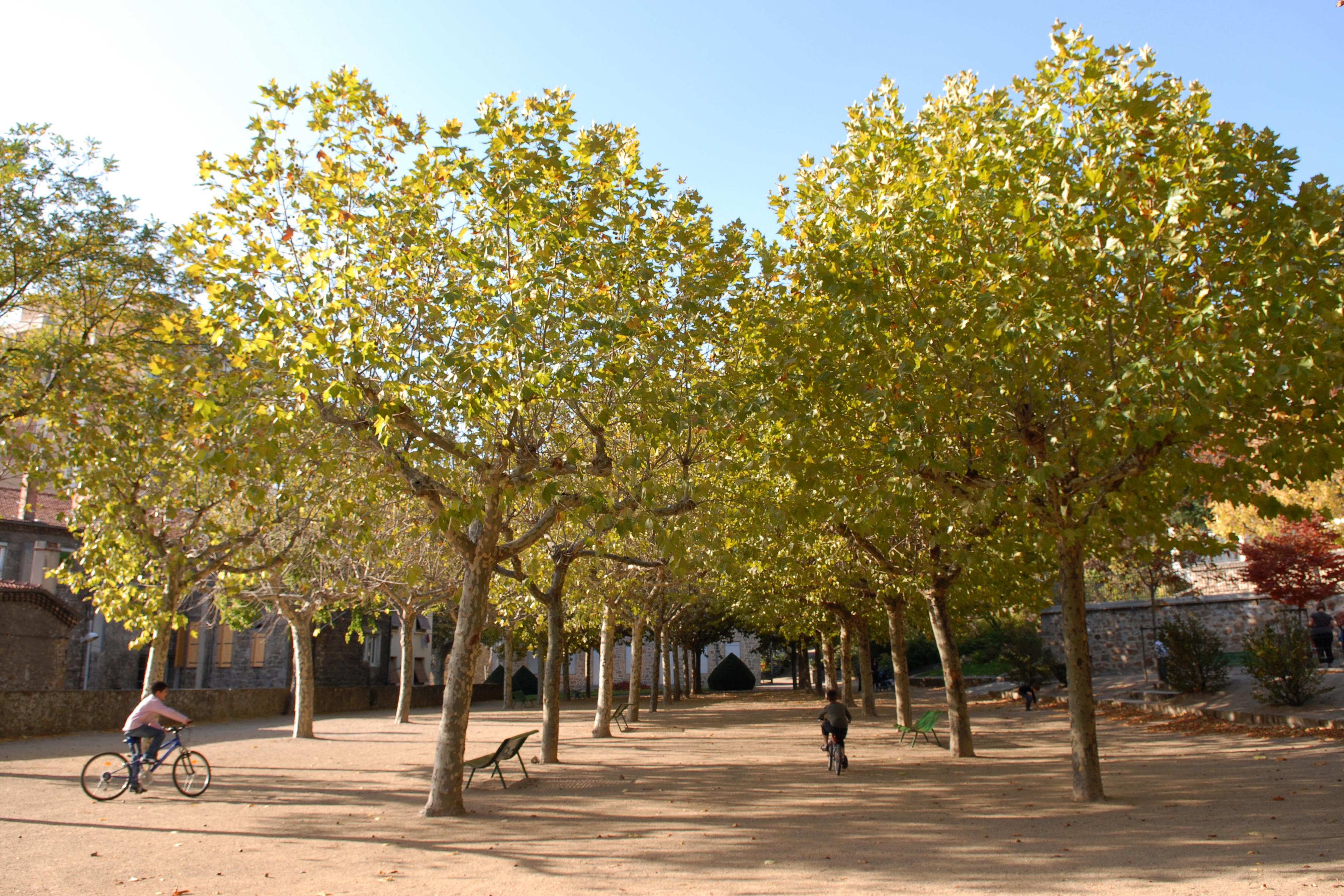 Patrimoine Naturel Office De Tourisme Ardèche Grand Air