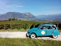 Sightseeing in a Citroën 2CV
