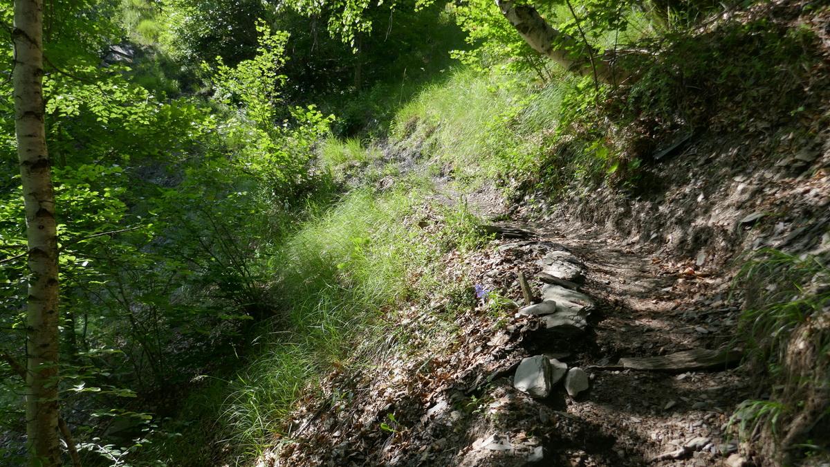 Le Chemin Muletier d'Oulles