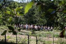 Visites commentées des jardins écologiques - Chassiers