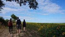 Randonnée Saint Caprais Ⓒ CDT Allier