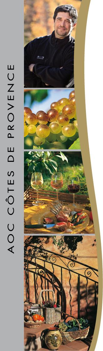 Visite Dégustation - Château Matheron