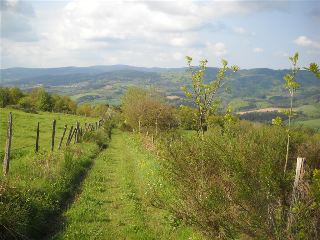 Sentier pédagogique - La Chabanne Sentier campagne Ⓒ Mairie La Chabanne
