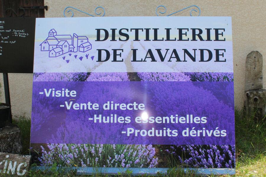 Distillerie de lavande - � Office de tourisme Sisteron Buech