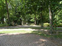 parc-et-jardin-yzeure-parc_laussedat3