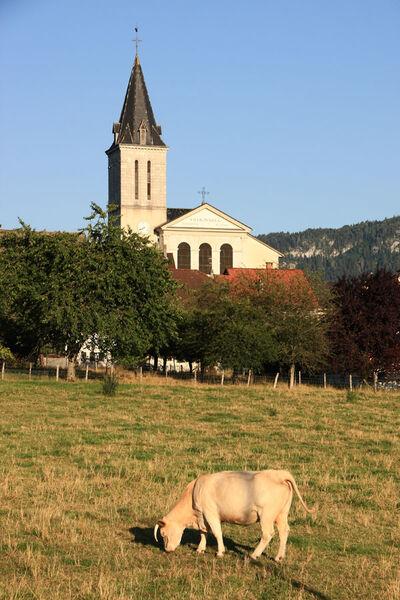 City town of Viuz-en-Sallaz // meublés classés en location sur le Massif des Brasses
