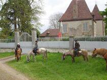Centre équestre Les Verts Halte devant château Ⓒ S. Westermann