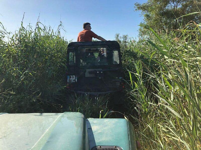 Visite de la Camargue en 4X4