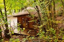 Les cabanes enchantées - © Les cabanes enchantées