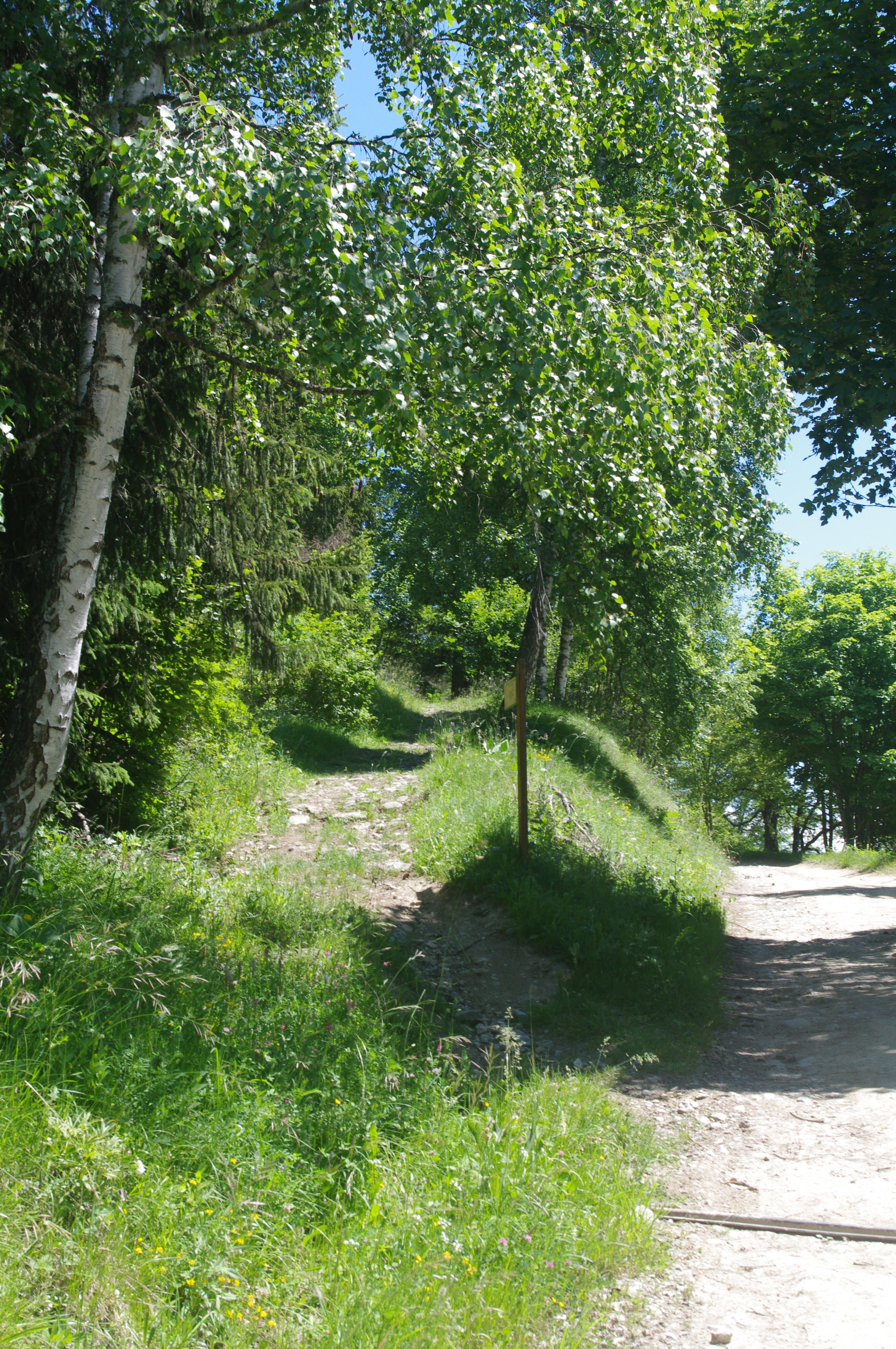 Sentier du Pré Benoit - Feissons sur Salins