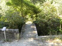 jardin du Curé (1)