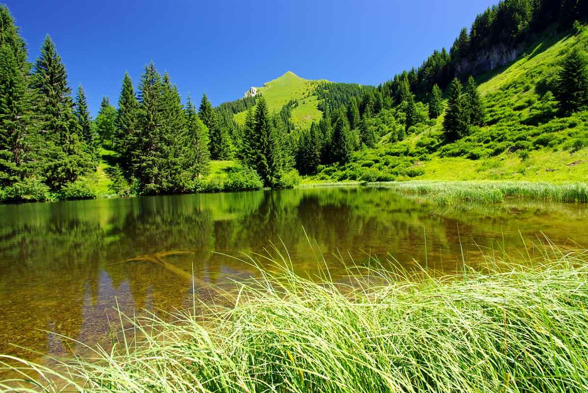 Le lac de Damoz des Moulins