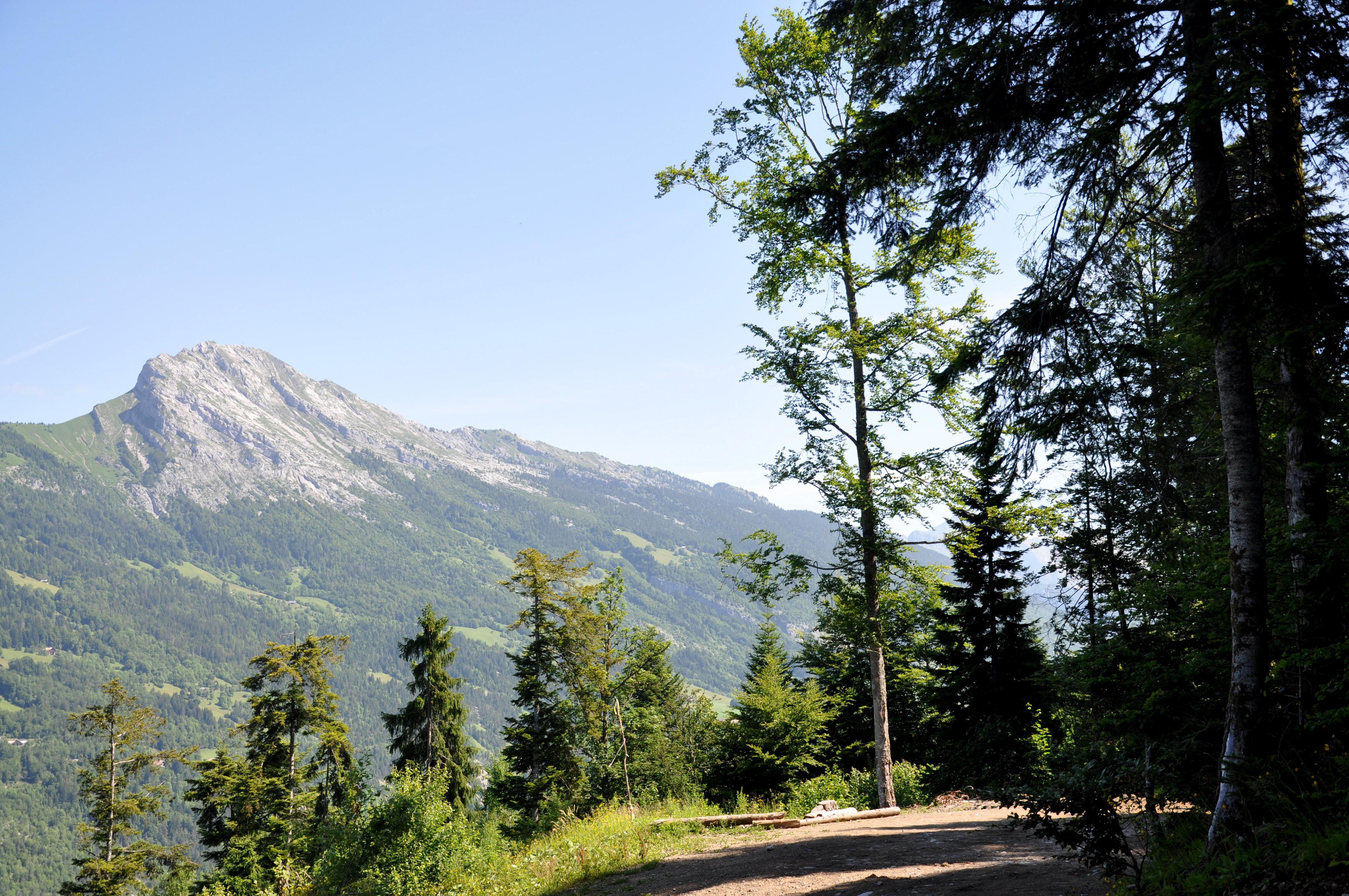 Sentier du Roi du Mont Thônes